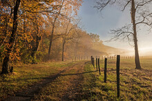 Fog Rises From The Creek In Golden Light At Cades Cove.