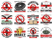 Pest Control Disinfection, Extermination Service Vector Disinfection And Deratization. Domestic Sanitary Pest Control From Insects And Rodents, Rats, Bugs Snakes And Cockroaches Disinfestation