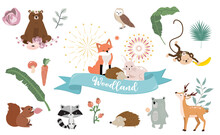 Cute Woodland Object Collection With Bear,owl,fox,skunk,mushroom And Leaves.Vector Illustration For Icon,sticker,printable