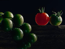 Bunch Of Green Tomatoes And One Red Tomato On Wooden Plank Against Black Background