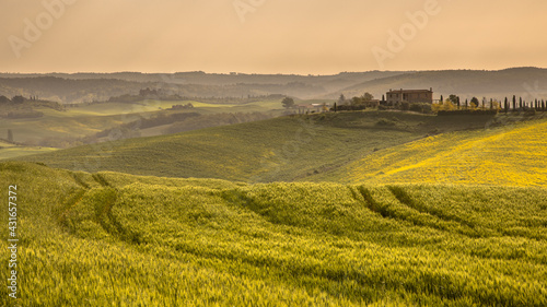 Naklejka premium Wheat field tuscan village