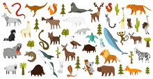 Collection Of Cute Vector Animals. Hand Drawn Animals Which Are Common In America, Europe, Asia, Africa. Icon Set Isolated On A White Background