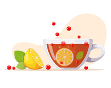 Aromatic Tea In Glass Cup With Berries, Lemon, Mint Leaves. Summer Refreshing Drink With Fruit. Fermented Probiotic Kombucha Tea. Healthy Eating. Vector Illustration
