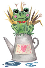 Cute Watercolor Frog Sitting In The Watering Can With A Heart Shape In The Floral Herbal Garden With Water Drops. Vector Hand Drawn Clipart Illustration.