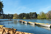 Parisians Boating On The Lower Lake In The Bois De Boulogne On A Sunny Day Of April.