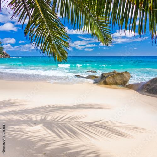 Palmes et reflets sur plage paradisiaque des Seychelles  - fototapety na wymiar