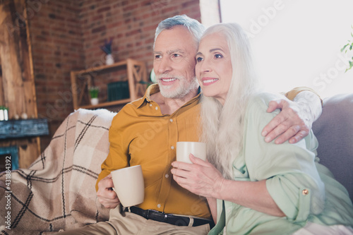 Obraz Photo of happy retired grey haired pensioner smile watch tv drink tea embrace indoors inside house home - fototapety do salonu