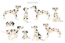 Dalmatian Dogs Clipart. Different Poses, Coat Colors Set