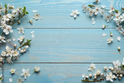 Beautiful spring flowers as borders on light blue wooden background, flat lay. Space for text