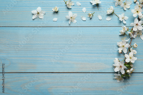 Blossoming spring tree branch and flowers as border on light blue wooden background, flat lay. Space for text