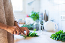 Woman's Hand Cutting Herbal Leavers To Prepare Tea In Kitchen