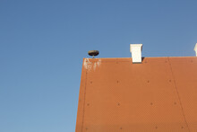 Closeup Shot Of A Red Tiled Roof With A Stork's Nest Against A Blue Sky