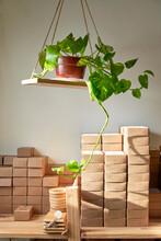 Handmade Soaps In Boxes Arranged Against Wall In Workshop