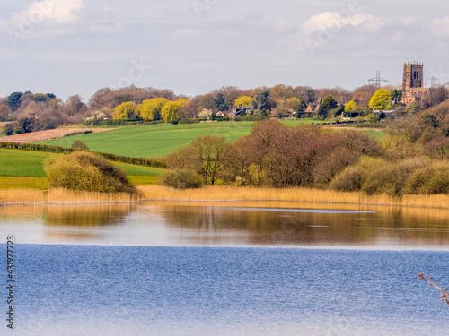 Fotografie, Obraz Early springtime sunshine on Pickmere Lake, Pickmere, Knutsford, Cheshire, UK