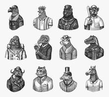 Gorilla Monkey Astronaut. Eagle Aviator Pilot Rooster Dinosaur Pig Tiger Bear Sheep Buffalo Bull Horse Cheetah. Dog Bulldog Baseball Tennis Player. Fashion Animal Character. Hand Drawn Vintage Sketch.