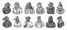 Gorilla Monkey Astronaut. Eagle Aviator Pilot Rooster Dinosaur Pig Tiger Bear Sheep Buffalo Bull Horse Cheetah. Dog Bulldog Baseball Tennis Player. Fashion Animal Character. Hand Drawn Vintage Sketch.
