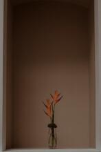 Vase With Orange Strelitzia Flowers