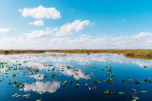 Reflection Of Clouds In Lake At Everglades National Park