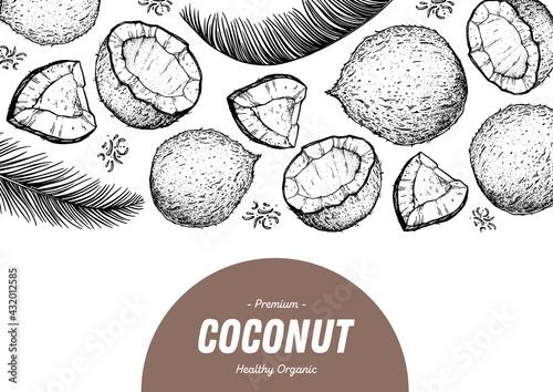 Fototapeta Coconut design template. Hand drawn vector. Food illustration Engraved style. Vector botanical illustration, tropical background. obraz