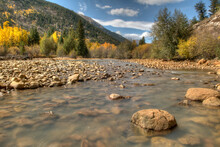 A Creek Surrounded By Fall Colors Off Colorado's Independence Pass