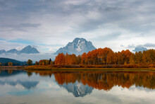 Fall Colors And Mount Moran At Oxbow Bend On The Snake River In Grand Teton National Park