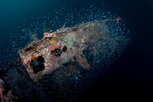 The Wing Of A Submerged, WWII Japanese Seaplane Surrounded By Juvenile Fish In The Solomon Islands.