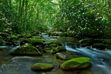 Oconaluftee River, Great Smokey Mountains National Park, North Carolina