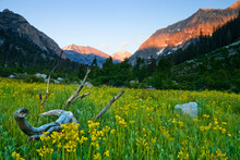 Sunset In Paradise Valley Meadows Along The Woods Creek Trail, Kings Canyon National Park, California.