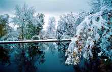Varsity Lake In Winter, University Of Colorado Campus, Boulder, Colorado.