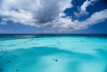 Sea Kayaker, Royal Island, Bahamas