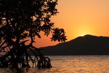 Sunset Behind Cayo Mayor In The Pig Keys, Honduras.