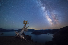A Pine Tree Leans At The Edge Of Crater Lake (Crater Lake National Park, Oregon), Beneath The Milky Way.