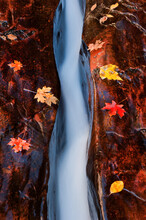 Water Flowing Through A Crack Outside The Subway In Zion National Park