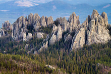 The Cathedral Spires Emerge From The Black Hills In South Dakota.