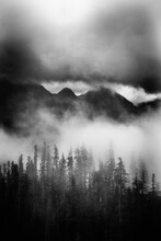 Dense Weather Clouds Blanket The Cascades And Highlight The Forest Below.