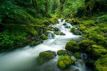 Deer Horn Creek, North Cascades National Park, Washington State, USA