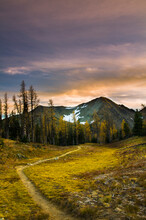 Frosty Mountain Trail During The Early Morning Hours, EC Manning Park, Hope, Canada