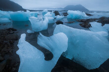 Icebergs, Calved By Nearby Hansbreen, Deposited On The Beach By The Tide In Hornsund, Svalbard.