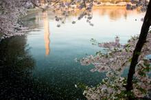The Washington Monument And Tidal Basin, Washington, D.C.