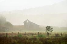 Barn In Fog Luray, VIRGINIA