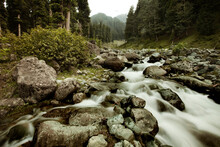 A Small Mountain Stream Above The Village Of Pahalgam In Kashmir, India.