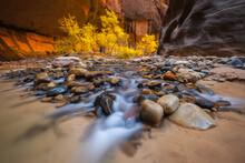 Cascading Levels, Utah, USA