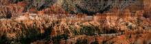 The Cathedral, Bryce Canyon National Park