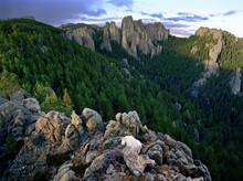 Mountain Goat, The Needles Black Hills South Dakota, USA