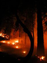 Fire Blazing At Night In California