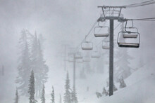 A Lone Skier Emerges Out Of The Snow Storm As Mt Baker Closes Its Lifts