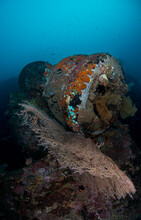 A Submerged US Army Truck From WWII Rests On The Sea Floor In The Solomon Islands.