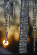Icicles At Sunset, Portland, Maine