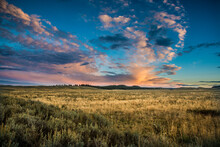 Evening Light In The Hayden Valley, Yellowstone National Park