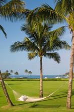 A Hammock Hangs Between Palm Trees At A Resort On A Sunny Day In Kauai, Hawaii.